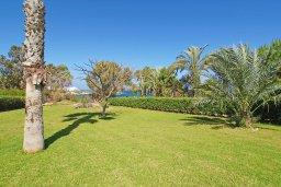 Территория. Кипр, Фиг Три Бэй Протарас : Очаровательная вилла с видом на Средиземное море, с 5-ю спальнями, 5-ю ванными комнатами, с прелестной зелёной лужайкой, тенистой террасой с патио и lounge-зоной, расположена на берегу моря в Протарасе