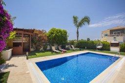 Бассейн. Кипр, Ионион - Айя Текла : Потрясающая вилла с видом на море, с 5-ю спальнями, с бассейном, с зелёным садом, тенистой террасой с патио, барбекю и садом на крыше