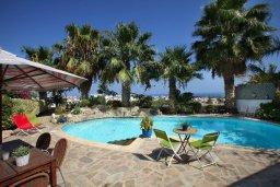 Бассейн. Кипр, Санрайз Протарас : Живописный коттедж с 3-мя спальнями, окруженный экзотическими пальмами с великолепным видом на море и плавательным бассейном