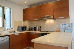 Кухня. Кипр, Лачи : Современная вилла с 3-мя спальнями ,с открытым частным бассейном, расположенная на краю Национального парка Акамас
