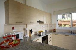 Кухня. Кипр, Фиг Три Бэй Протарас : Новая двухэтажная вилла с 3-мя спальнями,  с большим бассейном и террасой, в окружении деревьев и растений