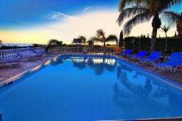 Бассейн. Кипр, Корал Бэй : Великолепная вилла, предлагающая изобилие пространства и конфиденциальности, с 5-ю спальнями, с видом на море, с бассейном и тенистой террасой, в окружении ухоженного сада
