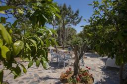 Зелёный сад. Кипр, Коннос Бэй : Шикарная вилла с 5-ю спальнями, с большим бассейном, красивым зелёным садом, беседкой с уличным баром и каменным барбекю, расположена в тихом уютном месте Cape Gkreco всего в 900 метрах от пляжа Konnos Bay Beach