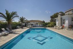 Бассейн. Кипр, Коннос Бэй : Шикарная вилла с 5-ю спальнями, с большим бассейном, красивым зелёным садом, беседкой с уличным баром и каменным барбекю, расположена в тихом уютном месте Cape Gkreco всего в 900 метрах от пляжа Konnos Bay Beach