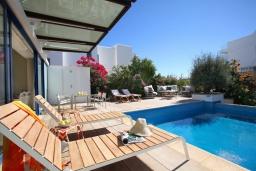 Бассейн. Кипр, Фиг Три Бэй Протарас : Современная роскошная вилла с 3-мя спальнями, с бассейном, в окружении пышного зелёного сада, с солнечной террасой с патио и барбекю, расположена недалеко от пляжа Fig Tree Bay Beach