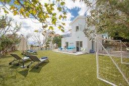 Территория. Кипр, Сиренс Бич - Айя Текла : Потрясающая вилла с 3-мя спальнями, с большим зелёным садом, с бассейном, солнечной террасой с патио и барбекю, расположена в 300 метрах от моря