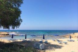 Пляж Ammos Kambouri Beach в Айя Напе, в районе пляжей Аммос и Лимнария