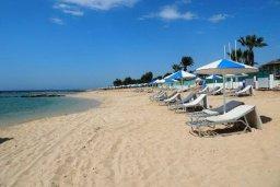 Пляж Limnara (Kermia) beach в Айя Напе, в районе пляжей Аммос и Лимнария