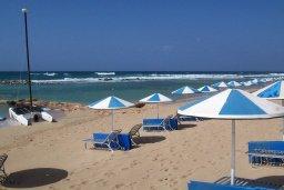Пляж Kermia Beach в Айя Напе, в районе пляжей Аммос и Лимнария