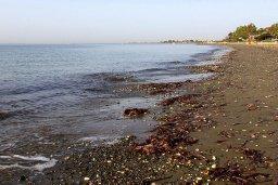 Пляж Kiti beach в Менеу