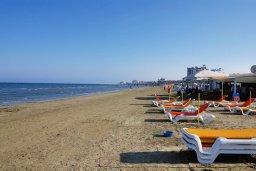 Пляж Финикудес / Finikoudes beach в Ларнаке