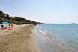 Пляж Dasoudi beach / Пляж в парке Дасуди в центре Лимассола