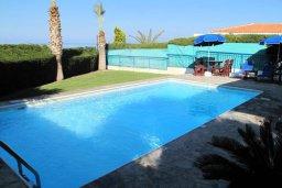 Бассейн. Кипр, Полис город : Уютная вилла с 2-мя спальнями, с бассейном, тенистой террасой с патио и барбекю, расположена в Лачи