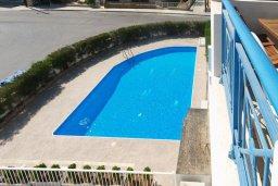 Бассейн. Кипр, Гермасойя Лимассол : Апартамент в комплексе с бассейном, с большой гостиной, тремя отдельными спальнями и двумя ванными комнатами, для 6 человек