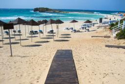 Ближайший пляж. Кипр, Сиренс Бич - Айя Текла : Шикарная вилла с бассейном и зелёным двориком, с 3-мя спальнями, патио и барбекю