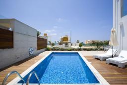 Бассейн. Кипр, Пафос город : Красивая вилла с 3-мя спальнями, с бассейном и солнечной террасой, расположена в Пафосе