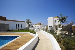 Территория. Кипр, Пафос город : Уютная вилла с бассейном, барбекю и солнечной террасой, расположена в Пафосе