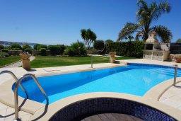 Бассейн. Кипр, Корал Бэй : Вилла с видом на море, с 3-мя спальнями, с бассейном, тенистой террасой с патио и барбекю, расположена в Coral Bay