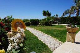 Зелёный сад. Кипр, Корал Бэй : Вилла с видом на море, с 3-мя спальнями, с бассейном, тенистой террасой с патио и барбекю, расположена в Coral Bay
