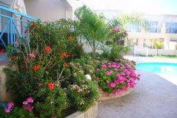 Территория. Кипр, Гермасойя Лимассол : Мезонет с гостиной и двумя отдельными спальнями