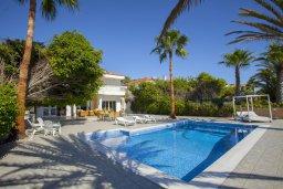 Бассейн. Кипр, Менеу : Шикарная вилла с 5-ю спальнями, с бассейном, в окружении пышного зелёного сада, с тенистой террасой с патио и барбекю, расположена в закрытом комплексе у пляжа Kiti Beach