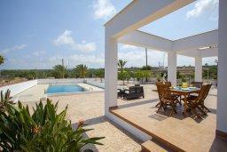 Территория. Кипр, Пернера : Потрясающая вилла с 6-ю спальнями,  с большим бассейном, в окружении красивого сада с цитрусовыми деревьями
