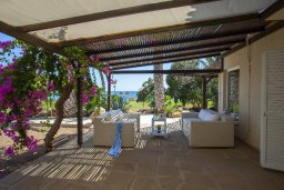 Терраса. Кипр, Нисси Бич : Вилла на берегу моря с 2-мя спальнями, потрясающим внутренним двориком, в окружение сада и великолепным видом на море