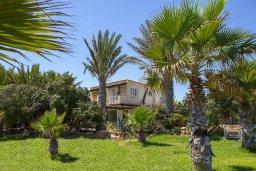Территория. Кипр, Нисси Бич : Вилла на берегу моря с 2-мя спальнями, потрясающим внутренним двориком, в окружение сада и великолепным видом на море
