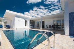 Бассейн. Кипр, Нисси Бич : Великолепная современная вилла с 4-ся спальнями, с бассейном и солнечной террасой с патио, расположена в нескольких минутах ходьбы от знаменитого пляжа Nissi Beach