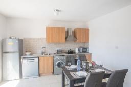 Кухня. Кипр, Центр Айя Напы : Уютный апартамент с отдельной спальней и балконом, расположен в комплексе с общим бассейном в 400 метрах от пляжа Limanaki beach