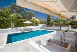 Бассейн. Кипр, Коннос Бэй : Комфортабельная вилла в 100 метрах от моря, с 3-мя спальнями, с бассейном, просторным садом с патио и барбекю