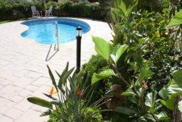 Бассейн. Кипр, Писсури : Вилла с бассейном, большой гостиной, 2 спальни, 3 ванные комнаты, зеленый дворик, место для барбекю, парковка, Wi-Fi