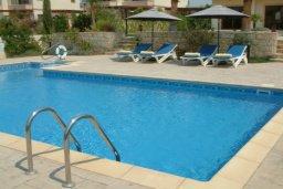 Бассейн. Кипр, Писсури : Вилла с бассейном, большой гостиной, 3 спальни, 3 ванные комнаты, место для барбекю, зеленый дворик, парковка, Wi-Fi