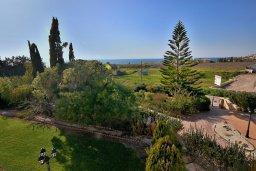 Зелёный сад. Кипр, Си Кейвз : Великолепная вилла с видом на море, с 5-ю спальнями, с просторным бассейном, в окружении красивого сада