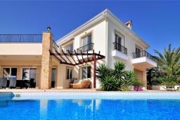 Бассейн. Кипр, Си Кейвз : Превосходная вилла с видом на море, с 4-мя спальнями, с бассейном, тенистой террасой и барбекю