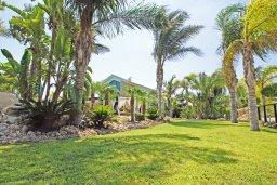 Территория. Кипр, Фиг Три Бэй Протарас : Шикарная вилла с 3-мя спальнями, 3-мя ванными комнатами, с бассейном, в окружении красивого сада, с настольным теннисом, бильярдом и lounge-зоной