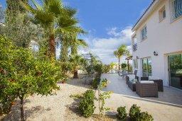 Территория. Кипр, Каво Марис Протарас : Потрясающая вилла с 4-мя спальнями, с бассейном, тенистой террасой с патио, каменным барбекю и традиционной глиняной печью, расположена в тихом районе Протараса недалеко от песчаного пляжа Lombardi Beach