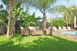 Зона отдыха у бассейна. Кипр, Коннос Бэй : Роскошная красивая двухэтажная вилла с 3-мя спальнями, с бассейном и потрясающим зелёным садом с патио