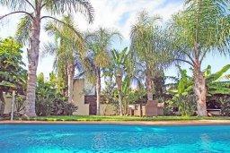 Бассейн. Кипр, Коннос Бэй : Роскошная красивая двухэтажная вилла с 3-мя спальнями, с бассейном и потрясающим зелёным садом с патио