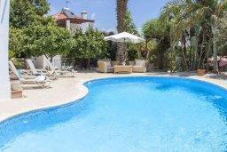 Бассейн. Кипр, Пейя : Комфортабельная вилла с панорамным видом на море и на горы, с 3-мя спальнями, с бассейном и барбекю