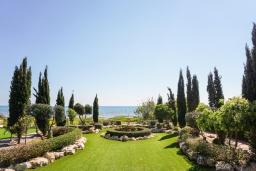 Территория. Кипр, Ионион - Айя Текла : Роскошная вилла на побережье с 5-ю спальнями, с бассейном, красивым зелёным садом и панорамным видом на Средиземное море