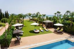 Зелёный сад. Кипр, Ионион - Айя Текла : Шикарная вилла на побережье Айя Теклы, с 5-ю спальнями, с бассейном, зелёным садом и потрясающим панорамным видом на Средиземное море