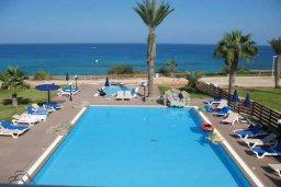 Бассейн. Кипр, Санрайз Протарас : Уютный апартамент с отдельной спальней и видом на море, в комплексе с большим общим бассейном