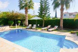 Бассейн. Кипр, Корал Бэй : Потрясающая вилла с 4-мя спальнями, с большим бассейном, с прекрасным зелёным садом с патио и барбекю, расположена недалеко от пляжа