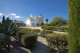 Территория. Кипр, Санрайз Протарас : Изысканная вилла с 5-ю спальнями, с большим бассейном, зелёной территорией с барбекю и беседкой