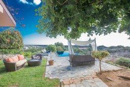 Территория. Кипр, Аммос - Лимнария Бич : Потрясающая вилла с террасой на крыше с захватывающим видом на Ayia Napa и Средиземное море, с 4-мя спальнями, с бассейном в окружении пышного зелёного сада, lounge-зоной и барбекю, расположена в предгорьях Ayia Napa в очень уединенном и спокойном районе