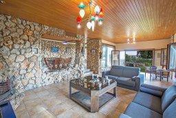 Гостиная. Кипр, Аммос - Лимнария Бич : Потрясающая вилла с террасой на крыше с захватывающим видом на Ayia Napa и Средиземное море, с 4-мя спальнями, с бассейном в окружении пышного зелёного сада, lounge-зоной и барбекю, расположена в предгорьях Ayia Napa в очень уединенном и спокойном районе