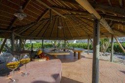 Территория. Кипр, Центр Айя Напы : Потрясающая вилла с 4-мя спальнями, просторным зелёным садом с беседкой и традиционной глиняной печью