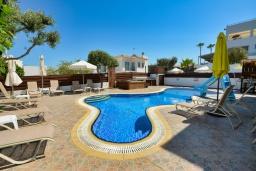 Бассейн. Кипр, Санрайз Протарас : Шикарная вилла с 5-ю спальнями, с бассейном, сауной, джакузи, тенистой террасой с патио и уличным баром, расположена около пляжа Fig Tree Bay