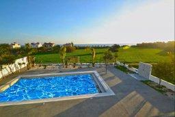 Бассейн. Кипр, Нисси Бич : Современная вилла с 4-мя спальнями, с бассейном, зелёной территорией и патио, расположена в 200 метрах от пляжа